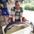 Keakraban Satgas TMMD Kodim Singkawang dan Masyarakat saat Mencari Ikan