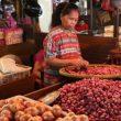 Kembali Naik Harga Bawang Merah di Lampung Utara Capai Rp. 35.000 Perkilogram