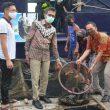 15 Ton Ikan Kerapu Hasil Budidaya Kawasan Mandeh Siap Untuk di Ekspor ke Hongkong