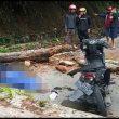 Dua Orang Pengendara Motor Tertimpa Patahan Pohon di Sitinjau Lauik,Satu Orang tewas