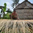 FOTO: Usaha Sapu Lidi di Sepuk Perupuk Gerakan Ekonomi Warga