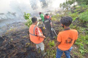 FOTO : Kebakaran Lahan di Parit Demang