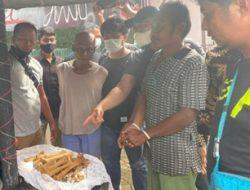 Tengah Transaksi di Kafe, BKSDA Sumbar dan Polisi Tangkap Dua Pelaku Penjual Tulang Harimau Sumatera